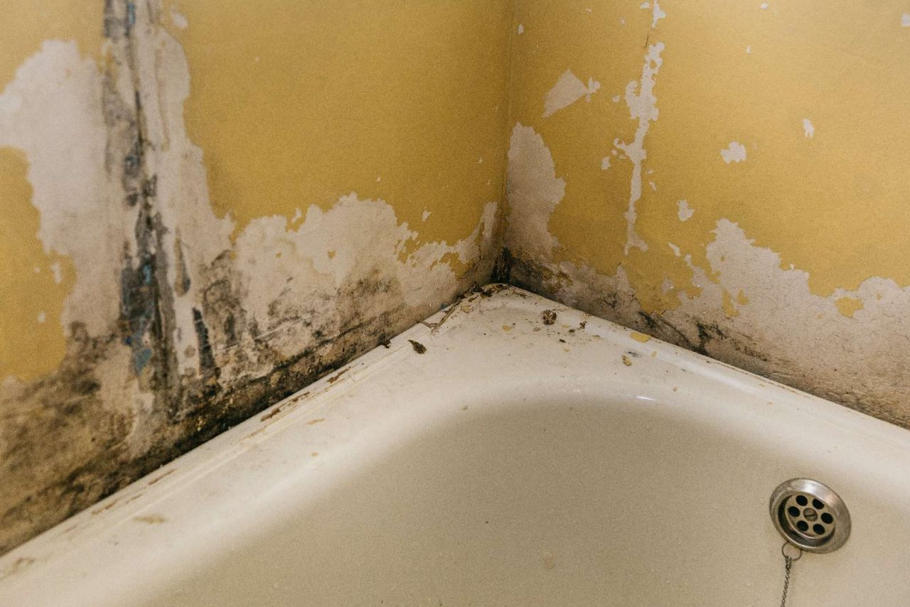 Old-Wall-In-The-Bathroom-compressed-1280x854.jpg